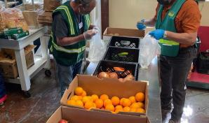 CERT volunteers packing bags of food for seniors